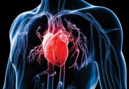 Low Serum Phosphate Linked to Risk of Heart Attack
